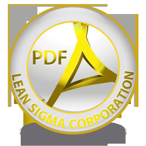 pdf Yellow Belt